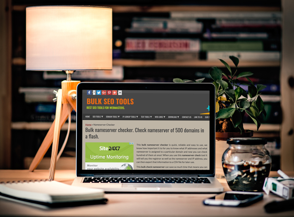 Save Hours With The Bulk Nameserver Check Tool